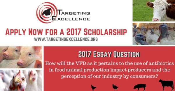 Targeting Excellence Inc. Scholarships