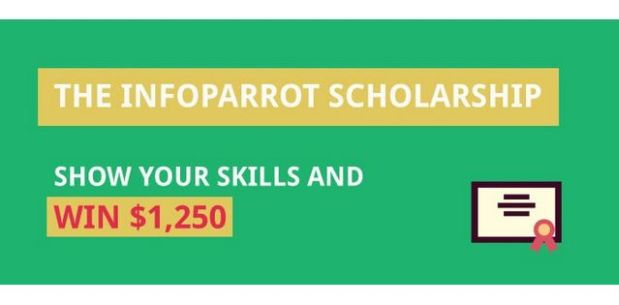 The Infoparrot Scholarship of Academic Excellence
