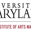 DeVos Institute Fellowship for Arts Managers