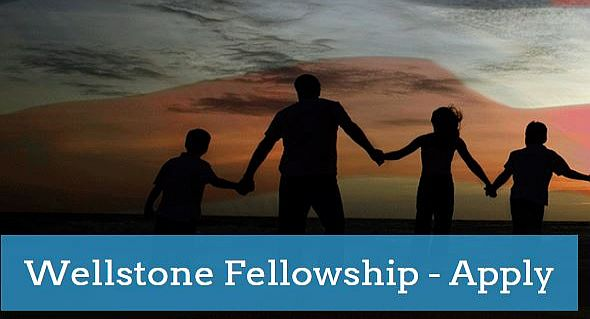 Wellstone Fellowship for Social Justice