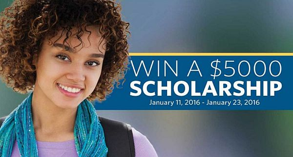 johnson scholarship essays