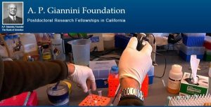 A.P. Giannini Foundation Postdoctoral Research Fellowship