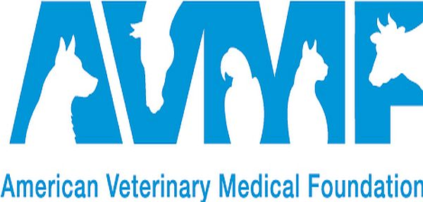 Veterinary Medicine what are foundation subjects