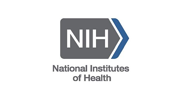NIH Undergraduate Scholarship Program