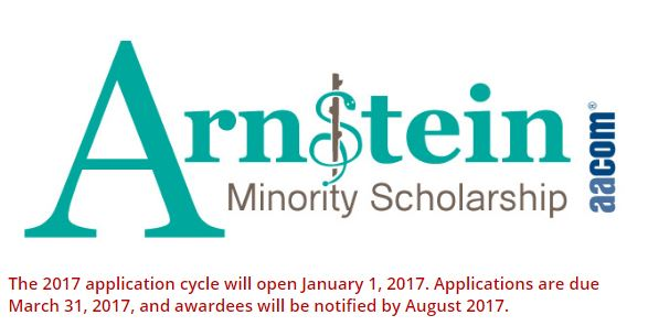 Sherry R. Arnstein Minority Student Scholarship