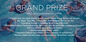 Disney Parks Be Our Guest to Endless Magic Sweepstakes