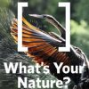 Nature Conservancy Digital Photo Contest