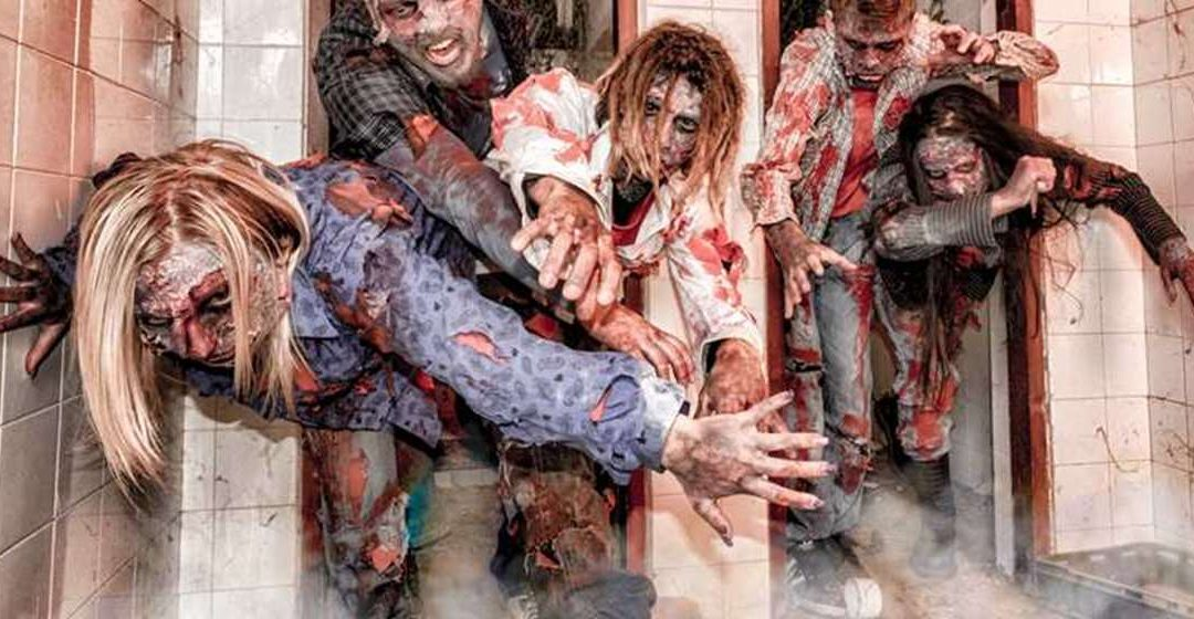 Zombie Apocalypse Scholarship Application Tips, Requirements And More